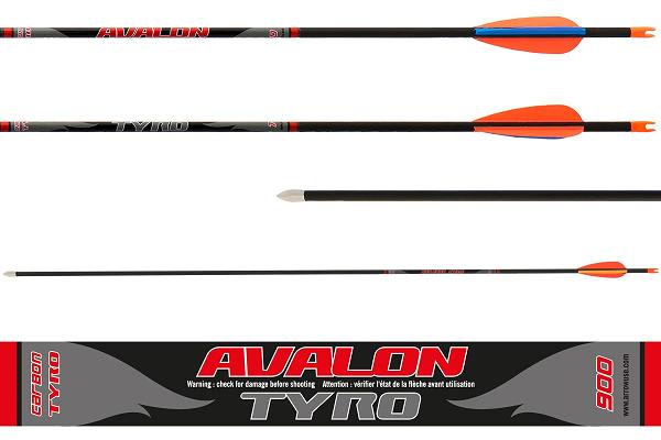 Avalon Tyro Carbon Arrows Set 12